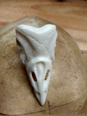 Mortality Ring : Memento mori : hand carved bone (Bos taurus) : BIRD skull ring