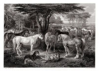 "1800s JAMES WARD Antique Engraving ""The Gathering of Horses"" FRAMED Signed COA"