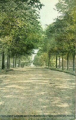 Lexington,MI. Main Street looking South from Hubbard 1910