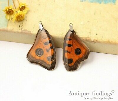 2pcs Real Butterfly Wing Charm Earring Necklace Pendant RW001S