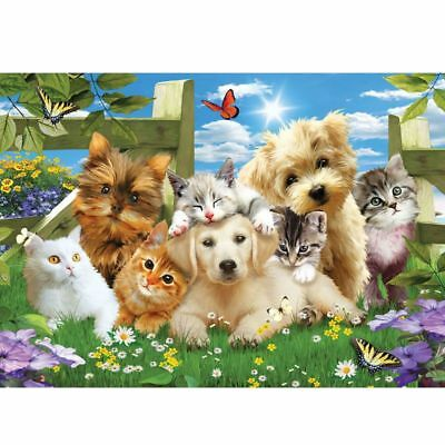 DIY Full 5D Diamond Painting Lovely Dog Cat Embroidery Cross Stitch Home Decor