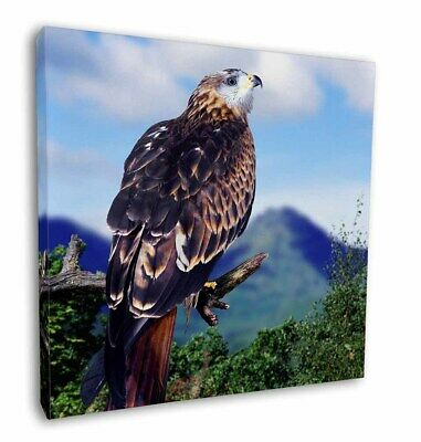 """Red Kite Bird of Prey 12""""x12"""" Wall Art Canvas Decor, Picture Print, AB-105-C12"""