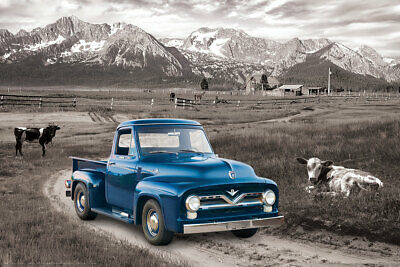 Ford F-100 Pickup Truck 1954 on Mountain Ranch Farm Classic Automobile POSTER