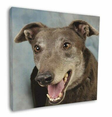 "Greyhound Dog 12""x12"" Wall Art Canvas Decor, Picture Print, AD-GH9-C12"