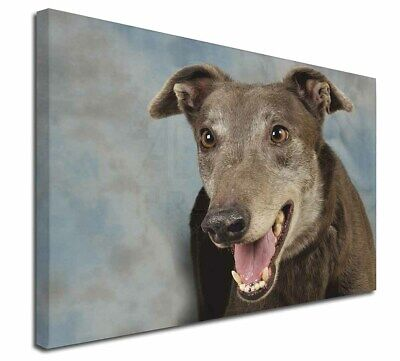 "Greyhound Dog 30""x20"" Wall Art Canvas, Extra Large Picture Print D, AD-GH9-C3020"