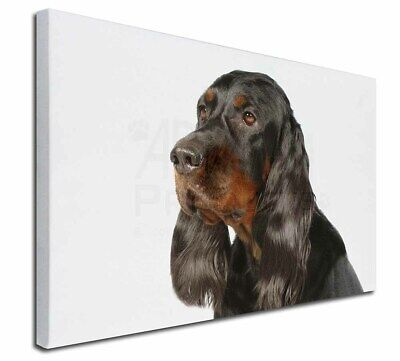 """Gordon Setter Dog 30""""x20"""" Wall Art Canvas, Extra Large Picture Pr, AD-GOR1-C3020"""