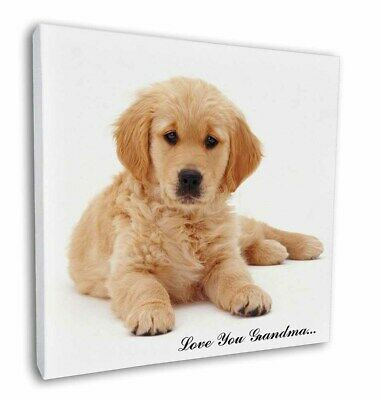 DOG PUPPY PUP NEW GIANT POSTER WALL ART PRINT PICTURE G335