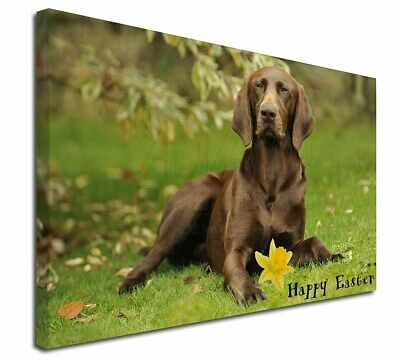 "'Happy Easter' German Pointer 30""x20"" Wall Art Canvas, Extra L, AD-GSP1DA1-C3020"