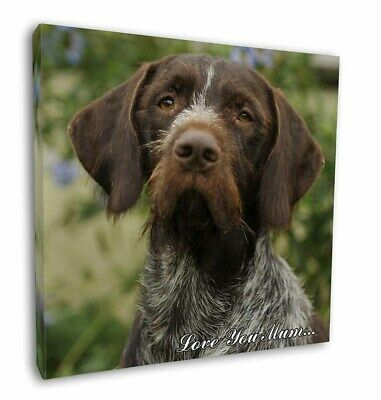 "German Wirehaired Pointer 'Love You Mum' 12""x12"" Wall Art Canvas, AD-GWP1lym-C12"