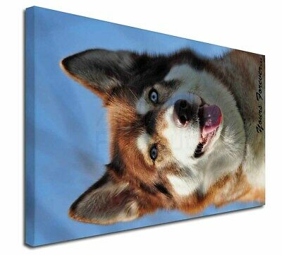 """Red Husky 'Yours Forever' 30""""x20"""" Wall Art Canvas, Extra Large Pi, AD-H68y-C3020"""