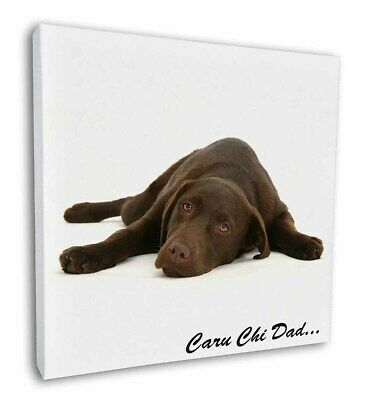 Chocolate Labrador /'Love You Dad/' Glass Paperweight in Gift Box Christ DAD-66PW