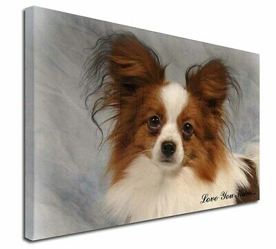 "Papillon Dog 'Love You Mum' 30""x20"" Wall Art Canvas, Extra Larg, AD-PA1lym-C3020"