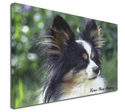 "Papillon Dog 'Love You Mum' 30""x20"" Wall Art Canvas, Extra Lar, AD-PA62lym-C3020"