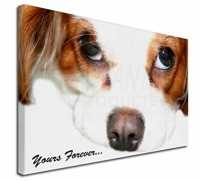 """Cavalier King Charles 'Yours Forever' 30""""x20"""" Wall Art Canvas, E, AD-SKC57-C3020"""