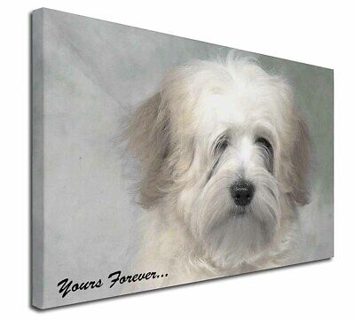 """Tibetan Terrier 'Yours Forever' 30""""x20"""" Wall Art Canvas, Extra La, AD-TT1y-C3020"""