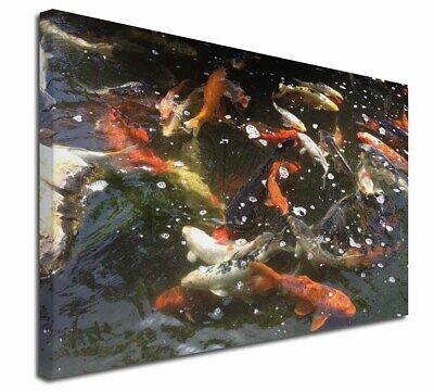 """Swimming Koi Fish 30""""x20"""" Wall Art Canvas, Extra Large Picture Prin, AF-K1-C3020"""