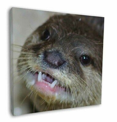 """Cheeky Otters Face 12""""x12"""" Wall Art Canvas Decor, Picture Print, AO-1-C12"""