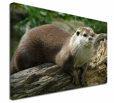 """River Otter 30""""x20"""" Wall Art Canvas, Extra Large Picture Print Decor, AO-2-C3020"""