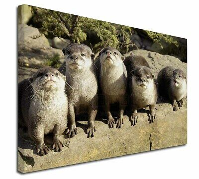 """Cute Otters 30""""x20"""" Wall Art Canvas, Extra Large Picture Print Decor, AO-6-C3020"""