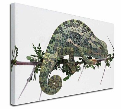 "Chameleon Lizard 30""x20"" Wall Art Canvas, Extra Large Picture Print, AR-L5-C3020"