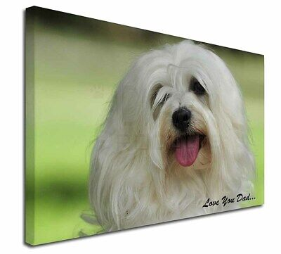 "Havanese Dog 'Love You Dad' 30""x20"" Wall Art Canvas, Extra Large P, DAD-55-C3020"