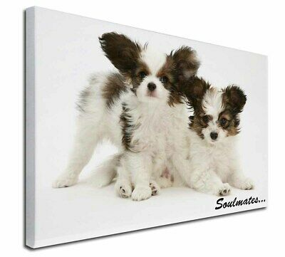 "Papillon Puppy Dog 'Soulmates' 30""x20"" Wall Art Canvas, Extra Lar, SOUL-44-C3020"
