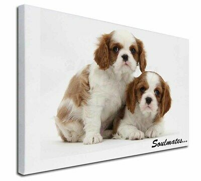 """King Charles Pups 'Soulmates' 30""""x20"""" Wall Art Canvas, Extra Larg, SOUL-56-C3020"""