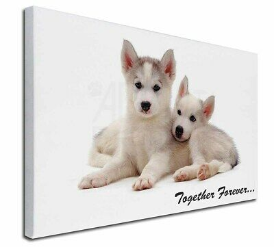 """Husky Puppies 'Together Forever' 30""""x20"""" Wall Art Canvas, Extra La, TF-H60-C3020"""