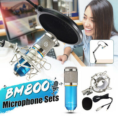 Condenser Pro Audio BM-800 Microphone Sound Studio Pickup Recording +Shock