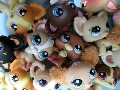 Littlest Pet Shop Set Lot 3 Random Chihuahua Puppy Dogs Authentic and Gift Bag