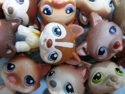 Littlest Pet Shop Set Lot 2 Random Husky Puppy Dogs Authentic Lps and Gift Bag