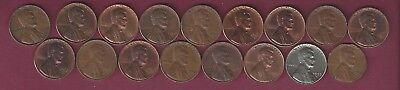 Lot of 17 Lincoln Memorial Cents