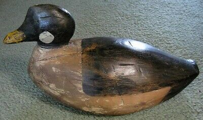 Antique AMERICAN GOLDENEYE Carved Wood DECOY New England Maine Working  c.1875