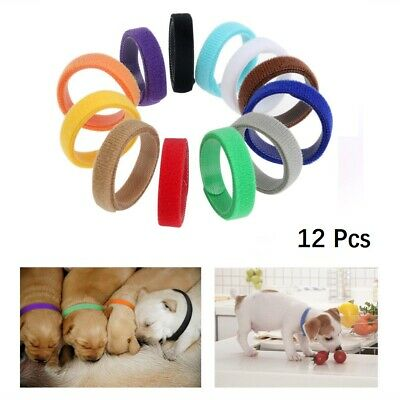12 Whelp ID Collars Whelping Newborn Puppy Kitten ID Collar Bands For Breeders🐾