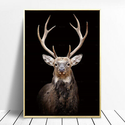 Elk Deer Lion Animal Canvas Painting Wall Art Picture Poster Print Home Decor