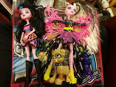 (2) Monster High Doll Lot with case cartoon toy girls clothes accessories