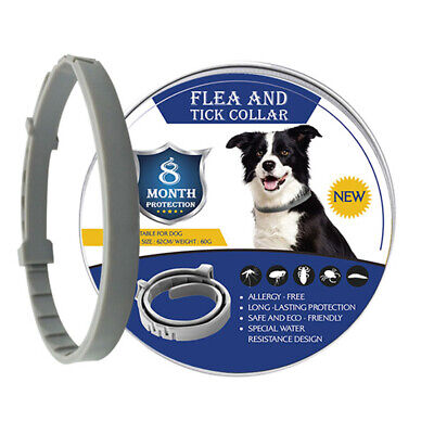Flea and Tick Prevention for Dogs  8 Months Protection,Adjustable,Natural Oils