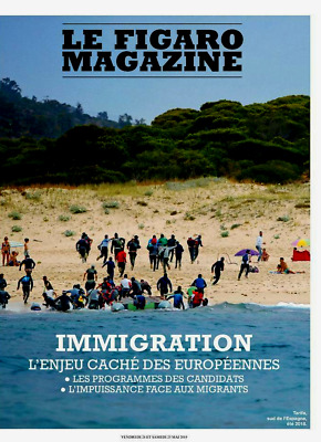 Le Figaro Magazine*25/5/2019*Neuf*Immigration*Bret Easton Ellis*Vin De Bourgogne
