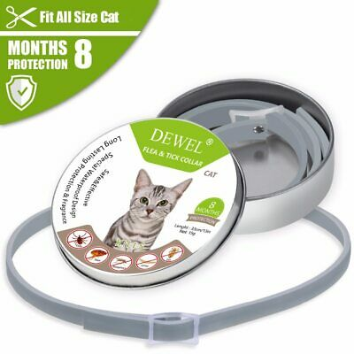 Flea and Tick Collar Cat Dogs Under 8kg 18 lbs Waterproof Non-Toxic Cut To Fit