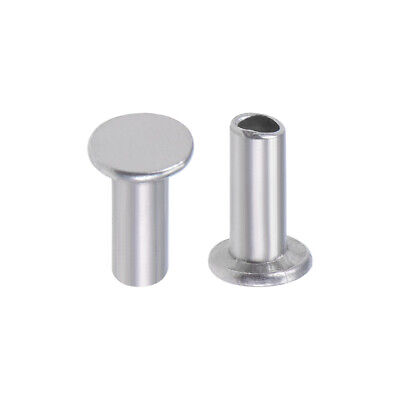 100Pcs 2.5mm x 6mm Aluminum Flat Head Semi-Tubular Rivets Silver Tone