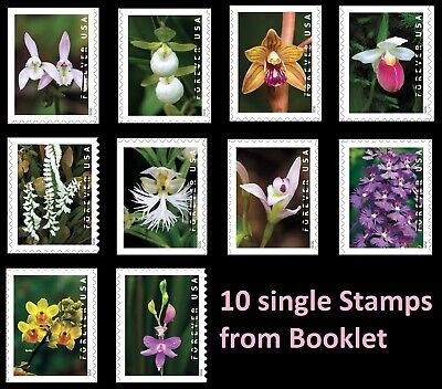 US Wild Orchids forever set (10 booklet stamps) MNH 2020