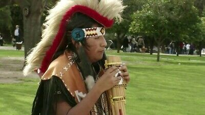 NATIVE AMERICAN INDIAN Meditation Music Panpipes CD flute healing stress  relax