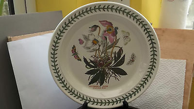 PORTMEIRION BOTANIC GARDEN DINNER PLATE CHRISTMAS ROSE  FACTORY 2nd