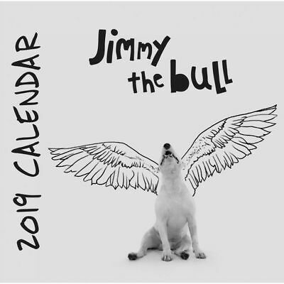 2019 Jimmy the Bull 2019 Desk Calendar,  by Wells Street by LANG