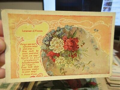 VICTORIAN ERA OHIO Old Antique Postcard Language of Flowers Forget-Me-Not Bows