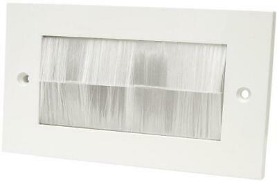 50x100mm Transparent White Brush Module with Faceplate - KAUDEN