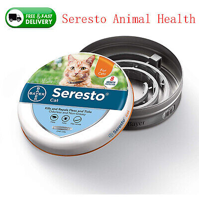 Bayer Seresto Flea and Tick Collar for Cat Protecting Health 8 months Treatment
