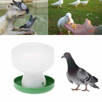 Pigeon Feeder Chicken Drinking Bird Quail Poultry Automatic Drink Water Plastic