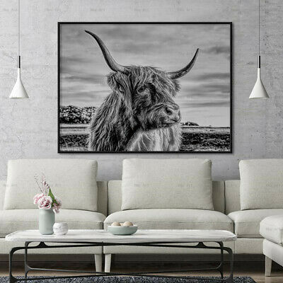 Highland Cow Yak Canvas Painting Wall Art Picture Poster Home Decor Decoration