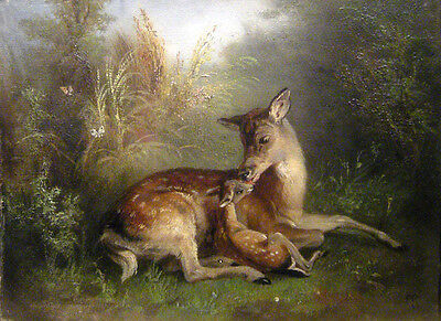 "perfect 36x24 oil painting handpainted on canvas ""deer""N8374"